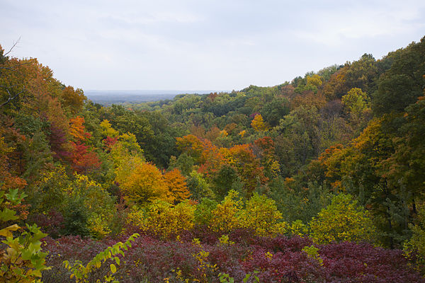 Photo by Brown_County,_Indiana,_Estados_Unidos,_2012-10-14,_DD_10 (1)